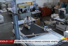 Photo of Punto Piuma: storia di una grande azienda