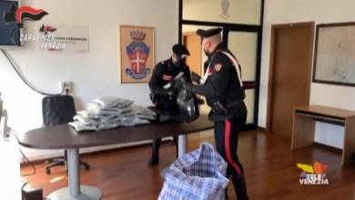 31 chili di marijuana in casa a San Donà di Piave: arrestato 31enne