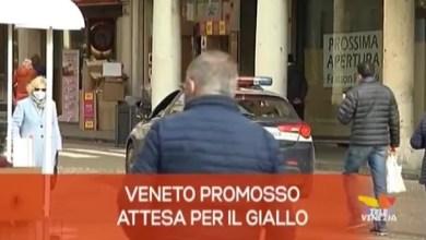 TG Veneto News - Edizione del 29 gennaio 2021