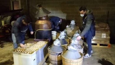 Distilleria abusiva scoperta a Treviso: sequestrati mille litri di grappa