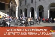 TG Veneto News - Edizione del 1 marzo 2021