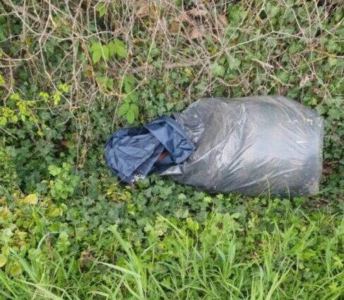 San Donà, abbandona un sacco di rifiuti nel fosso: sanzionato- Televenezia