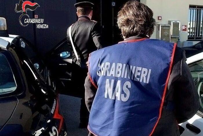 Controlli nei negozi etnici di via Piave: sanzioni per 55mila euro - Televenezia