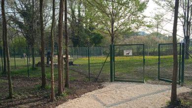 Al parco Catene di Marghera apre una nuova area cani - Televenezia