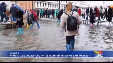 """San Marco, appello accorato: """"Urgenti lastre in vetro per la Basilica"""""""