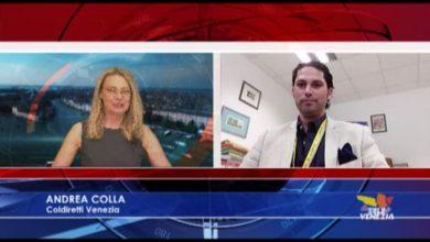 Agricoltura: Andrea Colla parla della situazione in Italia