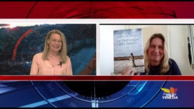 VIDEO: Carmela Scotti: La pazienza del sasso. Presentazione di Sara Zanferrari - TeleVenezia