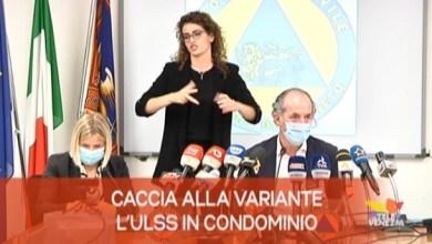 TG Veneto News - Edizione del 2 agosto 2021
