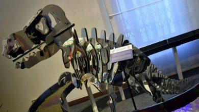 Murano Glass Toys: aperta la mostra al Museo del Vetro - TeleVenezia