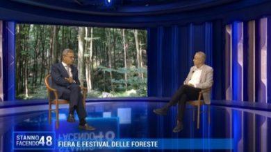 Fiera delle Foreste: occasione di formazione per imprese e cittadini