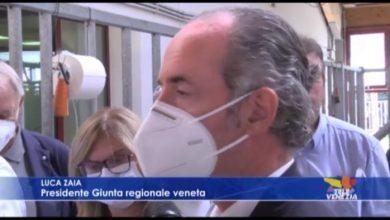 VIDEO: Balzo di qualità nella selezione del toro Miura - TeleVenezia