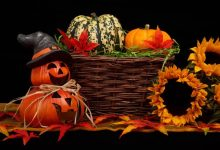 Halloween: Street Food, Green Motor Village e Hand Made - TeleVenezia
