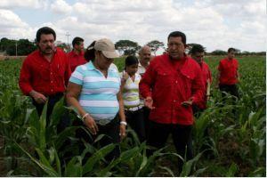 地元農民とチャベス大統領