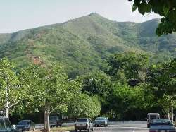 Cerro Casupo