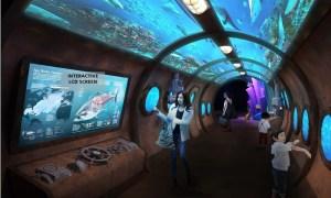 Jakarta Aquarium - Wisata Kala Musim Hujan
