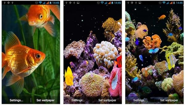 Aquarium Live Wallpaper Simple Aquarium App Many Background Choices