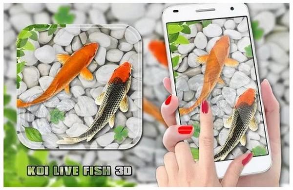 Fish Live Wallpaper 2020 Another Aquarium Live Wallpaper for Koi Lovers
