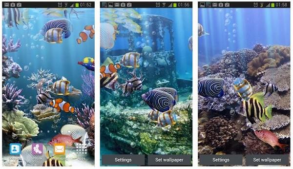 The real aquarium Live Wallpaper