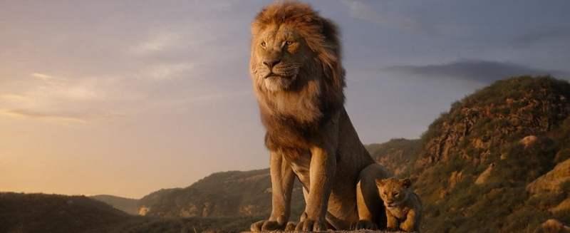 il-re-leone-2