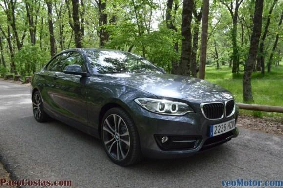 BMW Serie 2 220i (33)