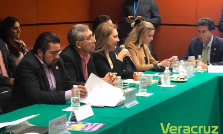 PAN comprometido en garantizar la seguridad de los mexicanos: Rosario Guzmán