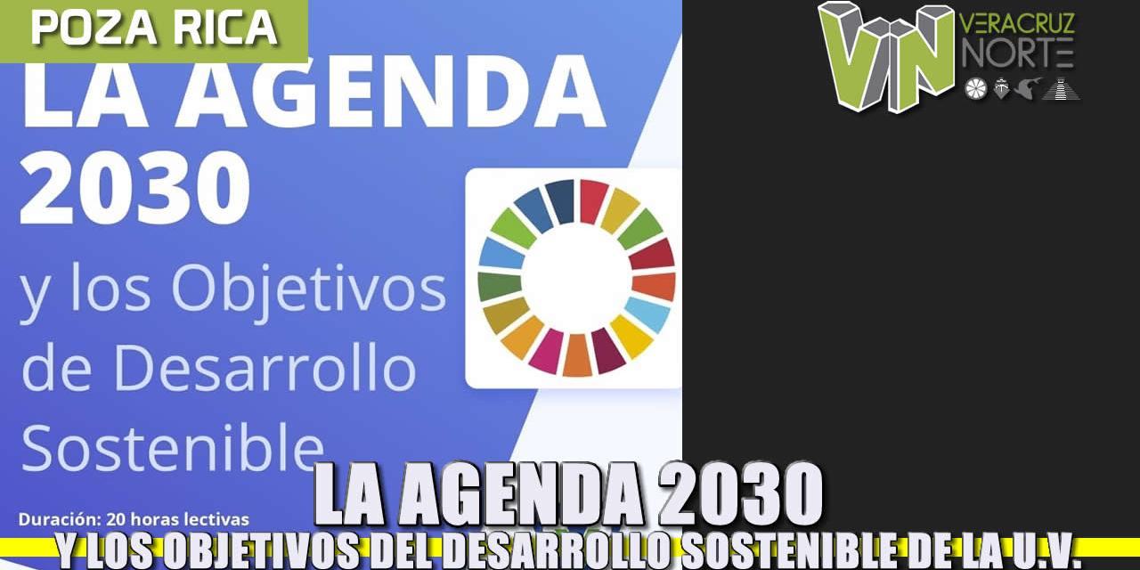 La Agenda 2030 y los Objetivos del Desarrollo Sostenible en la Universidad Veracruzana