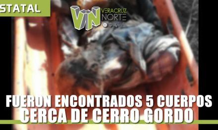 Encuentran 5 cuerpos putrefactos cerca de Cerro Gordo