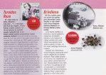 žurnāls IEVA, janvāris 2011