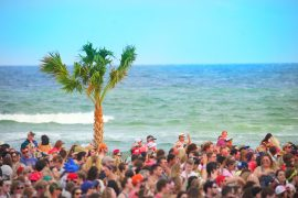 hangout music festival travel blogger
