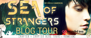 Sea of Strangers by Erica Cameron: Blog Tour + Review + Giveaway: How Much Would You Risk to Recover All That Means Home?
