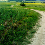 cesta Anka