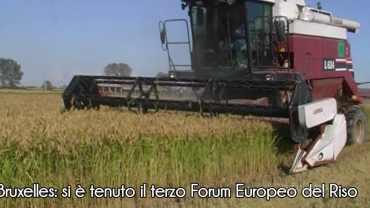 Bruxelles: si è tenuto il 3° forum europeo del riso