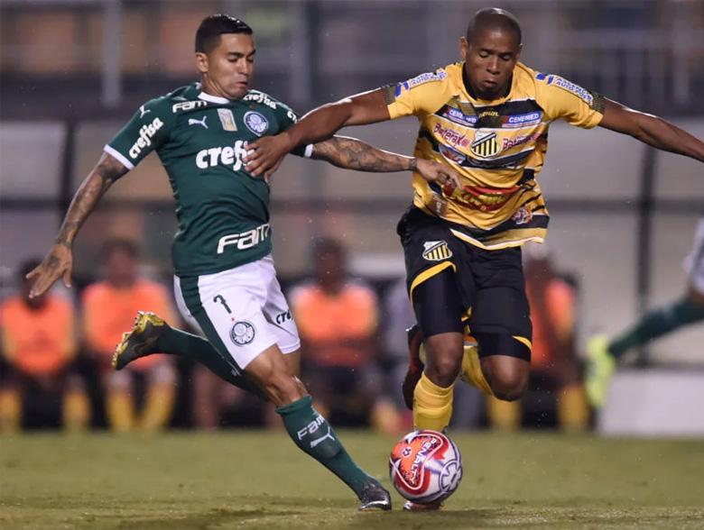 Palmeiras 5x0 Novorizontino