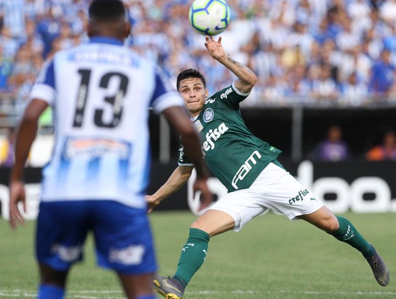 CSA 1x1 Palmeiras
