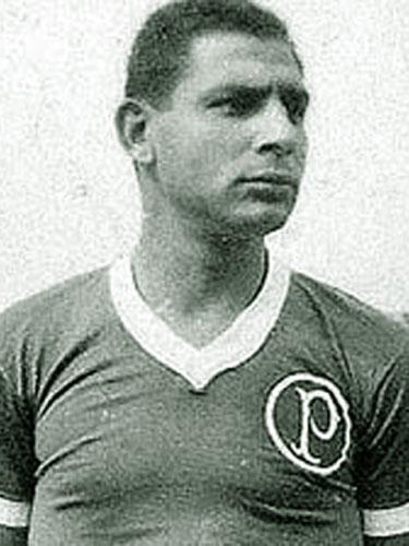Rodrigues Tatu