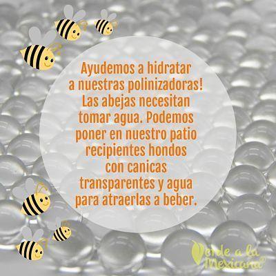 Ayuda para las abejas
