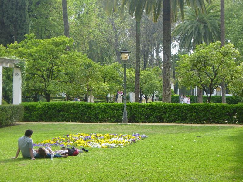 Parque Maria Luisa, cesped