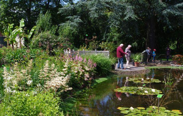 Jardin Botanico de Bristol