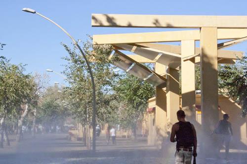 Barbaridades en jardinería: Alameda de Sevilla
