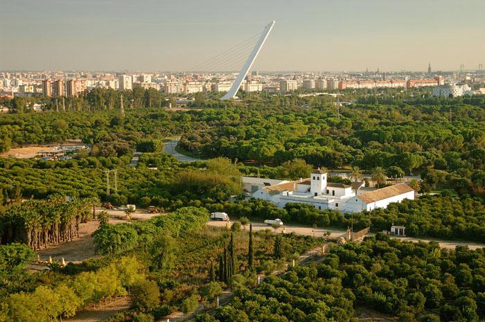 Vistas del Parque del Alamillo. Sevilla