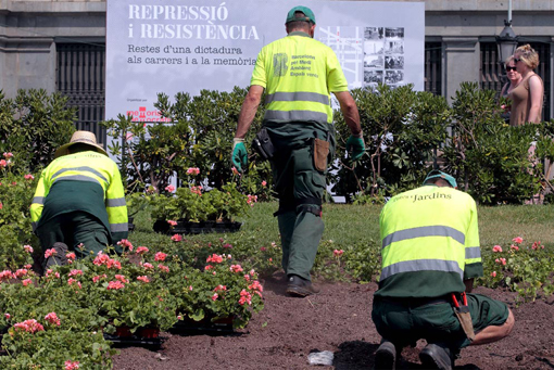 Jardineros, Taller de Dirección de Obra en Paisajismo y Jardinería
