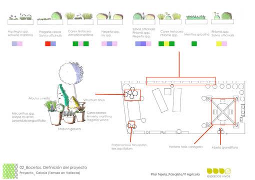 terraza 2. plano de planta con algunos bocetos_ Espacios Vivos