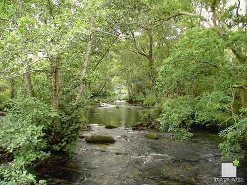 Río Anllóns en Verdes