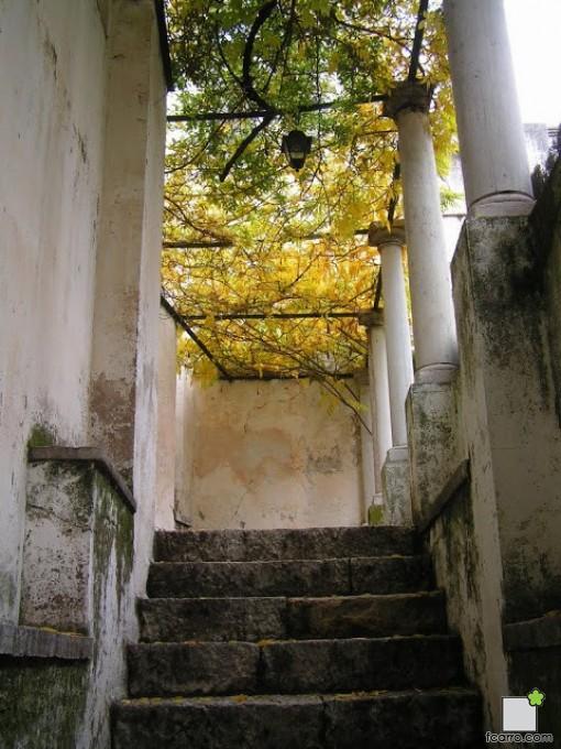 Escaleras del carmen de la Fundación Rodríguez Acosta