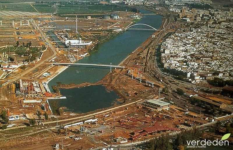 paisajismo de Expo92: Tapón de Chapina