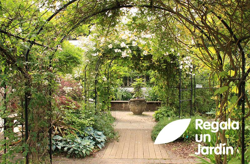Regala un jardín