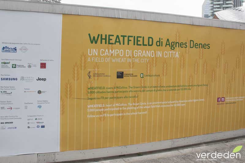 Cartel wheatfield