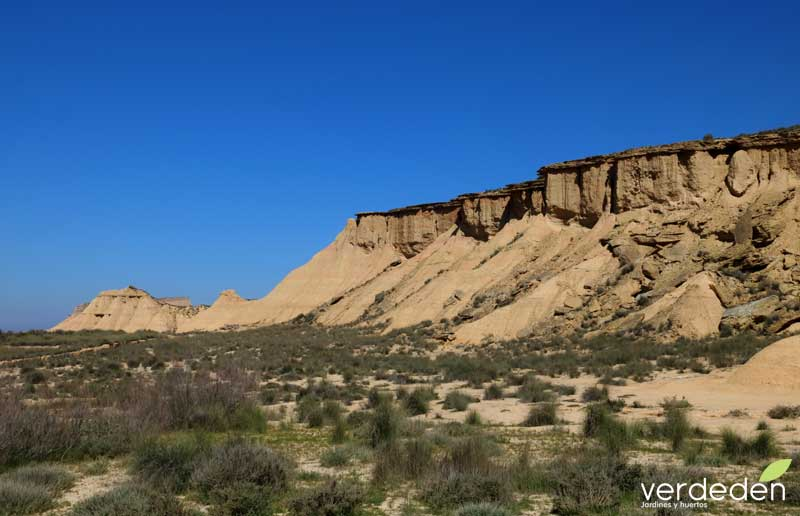 Bardenas Reales - Colinas erosionadas