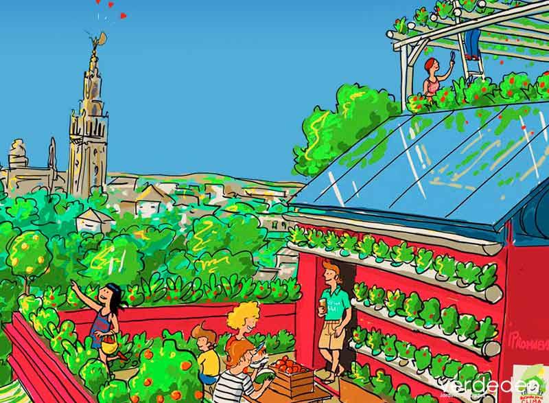 terrazas , red Sevilla por el clima