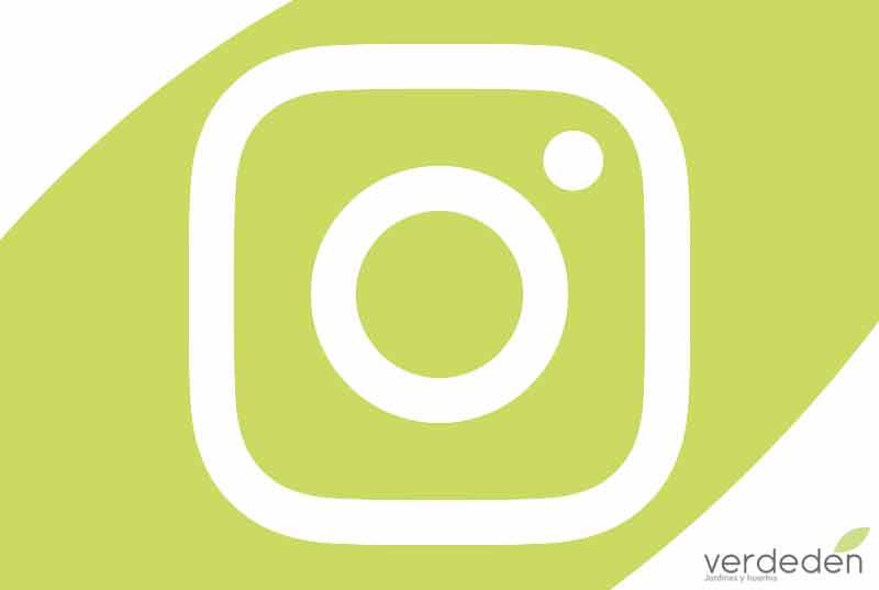 verdeden también está en Instagram